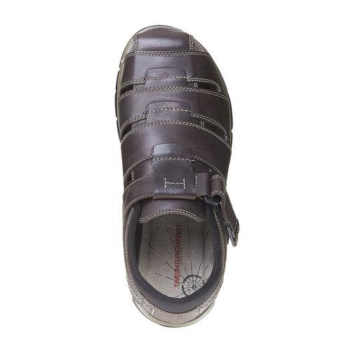 Sandali da uomo in pelle weinbrenner, marrone, 864-4213 - 19