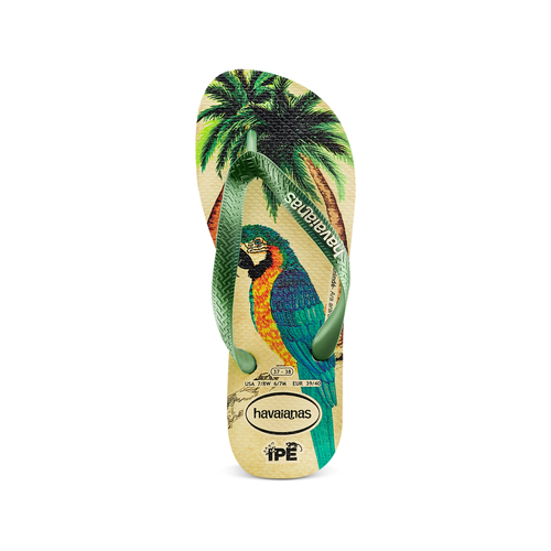 Havaianas Ipe havaianas, verde, 572-7456 - 17